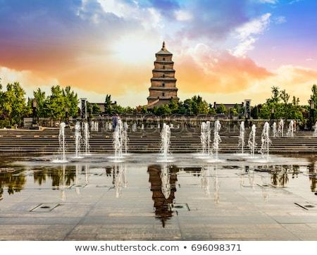 Gigante ganso pagode chuvoso cenário Foto stock © prill