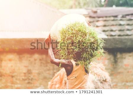 Lavoratore pezzo legno indietro mani Foto d'archivio © photography33
