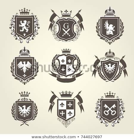 Heraldic Crest Vector Set Stockfoto © GoMixer