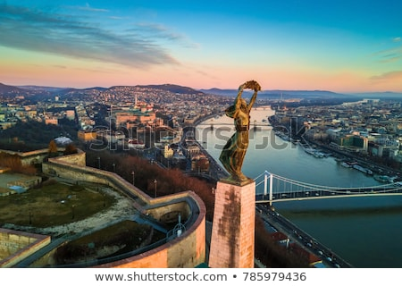 The Liberty Statue in Budapest, Hungary - Citadella Stock photo © samsem