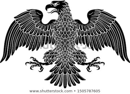 Sas kabát karok keret madár fekete Stock fotó © krabata