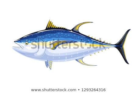 Peixe atum sushi natureza morta yen assinar Foto stock © Fisher