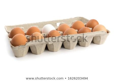 um · dúzia · fresco · ovos · cartão · branco - foto stock © tab62