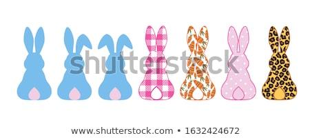Húsvéti nyuszi felirat rózsaszín nyúl fülek tart Stock fotó © Lightsource