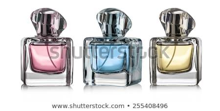 tuvalet · şişeler · iki · plastik · mavi · şampuan - stok fotoğraf © shutswis