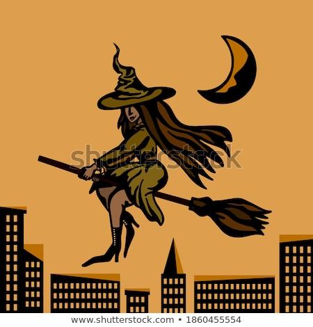 Flying · ведьмой · 3d · иллюстрации · молодые · верховая · езда · метловище - Сток-фото © mike_kiev