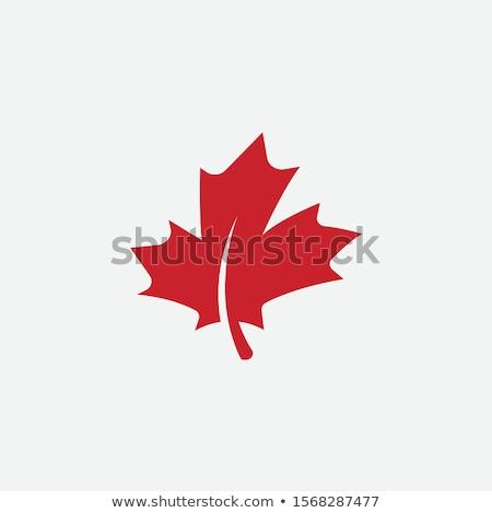 Maple leaf logotipo mulher moda abstrato saúde Foto stock © shawlinmohd