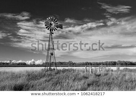 風車 · 日没 · 自然 · フィールド · シルエット · 塔 - ストックフォト © elwynn