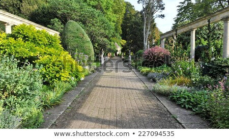 summer garden with beautiful lawns and avenues Stock photo © alinamd