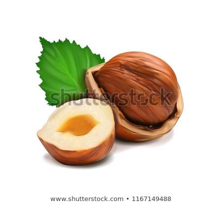 Hazel nuts.  Stock photo © Kurhan