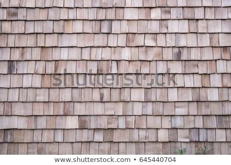 Foto d'archivio: Vecchio · tetto · texture · casa