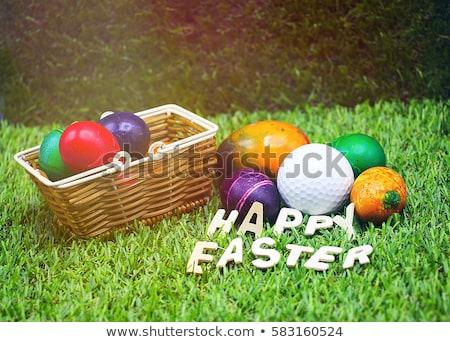 fehér · tálak · húsvéti · tojások · golf · golyók · kettő - stock fotó © capturelight