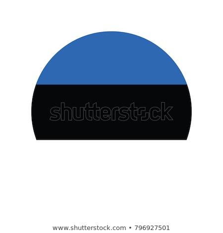 Észtország zászló ikon izolált fehér üzlet Stock fotó © zeffss