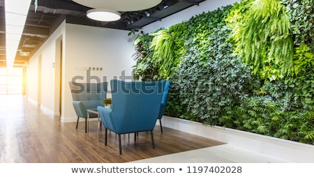 old wall with green plants on it stock photo © nejron