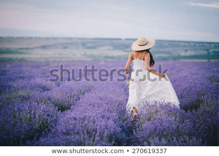 Donna viola abito Hat campo di lavanda panorama Foto d'archivio © Nejron