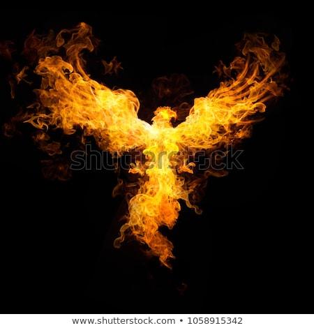 Zwarte phoenix vleugels vliegen omhoog hemel Stockfoto © Soleil
