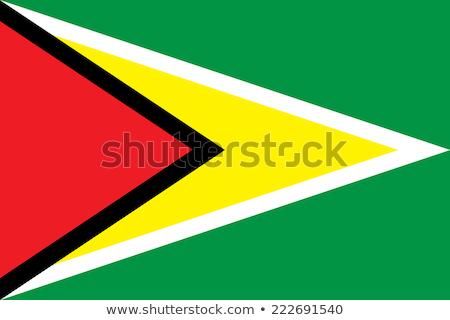 Zászló Guyana pólus integet szél fehér Stock fotó © creisinger