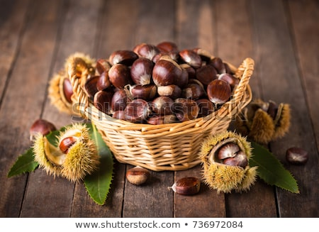 Group of sweet chestnuts Stock photo © olandsfokus