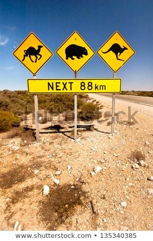 extremism on warning road sign stock photo © tashatuvango