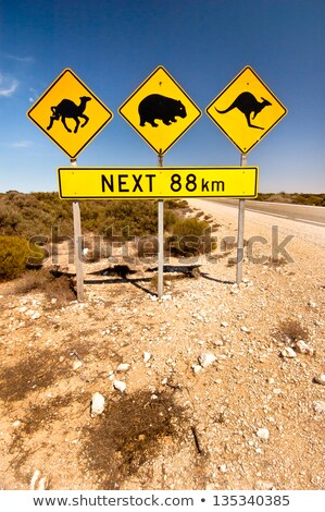 Aviso placa sinalizadora pôr do sol céu estrada fundo Foto stock © tashatuvango