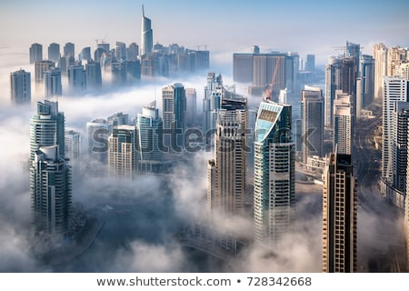 dubai city from the top of a tower stock photo © vwalakte