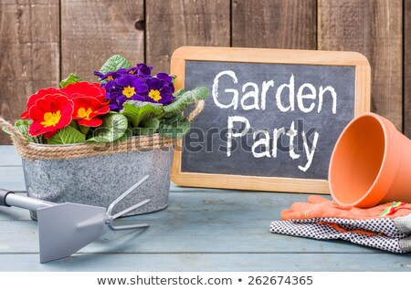 Blackboard on a plant table with the text Garden Party Stock photo © Zerbor