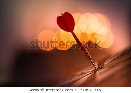 Vermelho dardo alvo isolado branco Foto stock © AndreyPopov