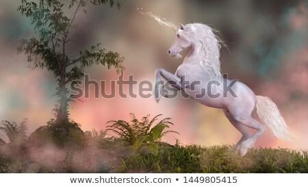 закат иллюстрация силуэта красивой фантазий млекопитающее Сток-фото © adrenalina