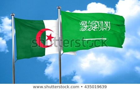サウジアラビア アルジェリア フラグ パズル 孤立した 白 ストックフォト © Istanbul2009