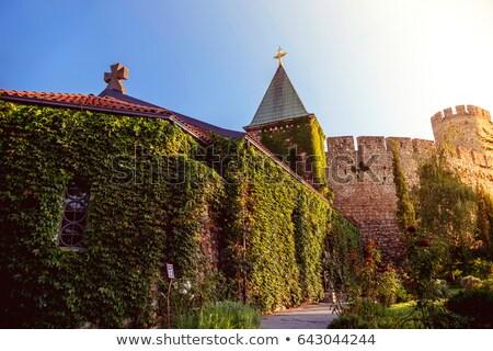 Belgrade forteresse Serbie couleur photo ville Photo stock © Kirill_M
