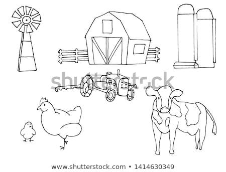 colored hand drawn farm icon set stock photo © netkov1