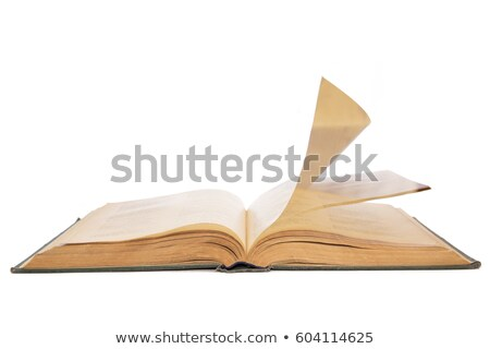 Stock photo: blank old facing pages