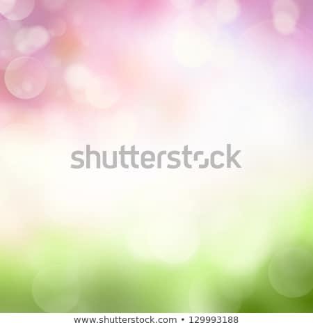 Színes tavasz copy space vibráló fehér csetepaté Stock fotó © ozgur