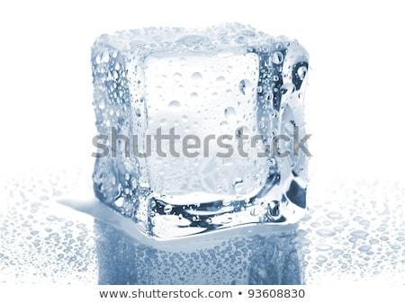 Ein Ice Cube Wasser Essen Licht Glas Stock foto © alex_l