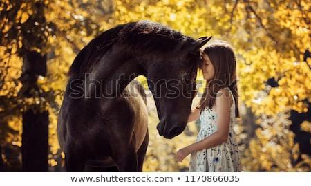 belo · sorridente · menina · equitação · cavalo · outono - foto stock © artfotodima