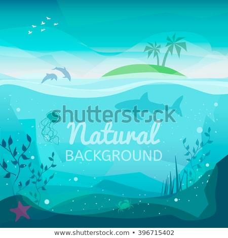 onderwater · behang · schip · water · rock · dood - stockfoto © carodi