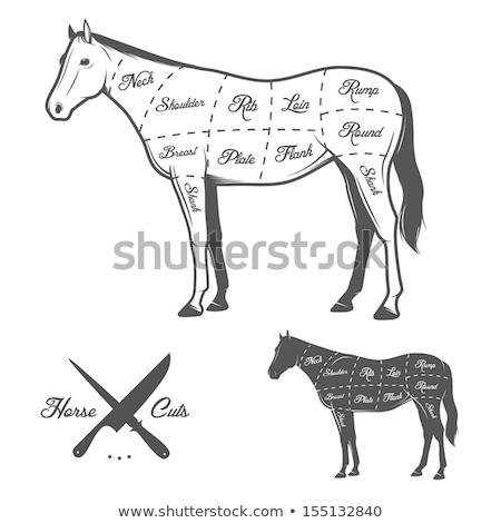 Caballo carnicero signo carne caballos agricultura Foto stock © Ustofre9