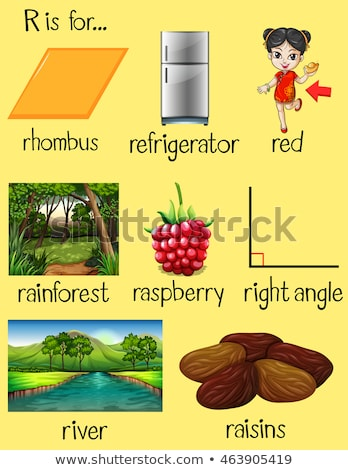 Flashcard letter R is for rainforest Stock photo © bluering