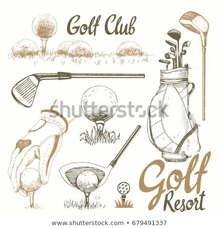 golf ball and putter sketch icon stock photo © rastudio