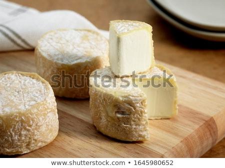 Stockfoto: Kaas · frans · geiten · melk · bladeren · plaat