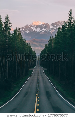 Straight asphalt road leading into the distance Stock photo © digoarpi