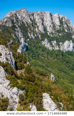 Pic de Bugarach in southern France Stock photo © LianeM
