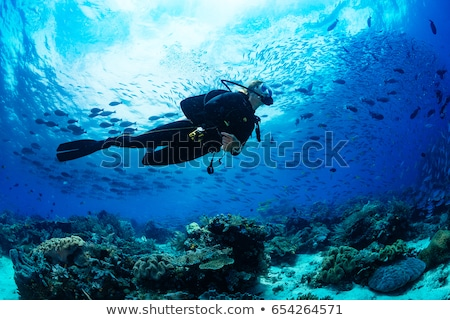 Woman diver at tropical coral reef scuba diving in tropical ocea Stock photo © Kzenon