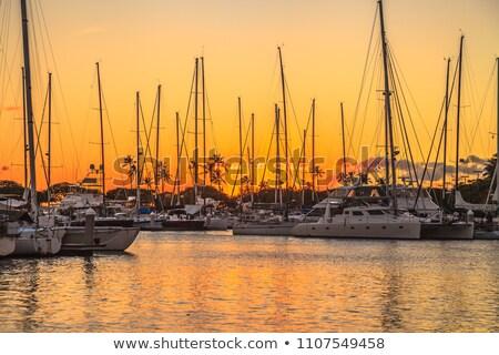 Tekne liman waikiki marina tekneler batı Stok fotoğraf © kraskoff