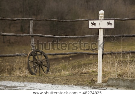 Many wild animals on wooden wagon Stock photo © bluering