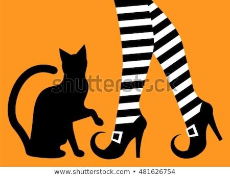 Halloween sapatos bruxa gato preto ilustração olho Foto stock © adrenalina