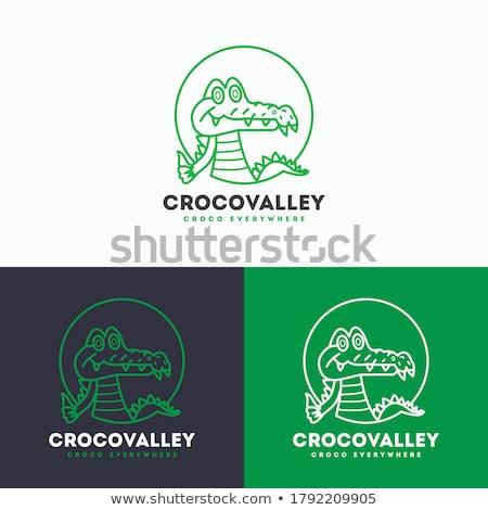 Trei crocodiles grădină zoologică ilustrare natură fundal Imagine de stoc © bluering
