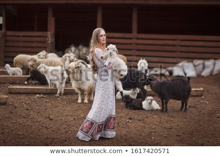 Paraszt lány farm illusztráció szélmalom Stock fotó © adrenalina