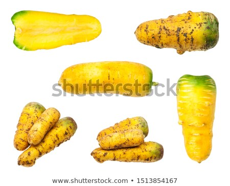 Half of carrot and few slices Stock photo © digitalr