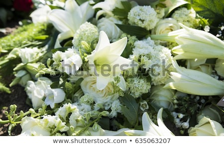 Foto stock: White Funeral Flowers